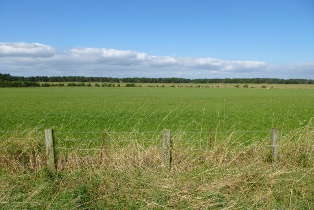 Farmland off Hadston Links