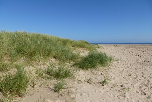 Dunes at Chibburn Mouth