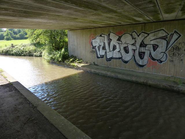 Graffiti underneath Squires Bridge