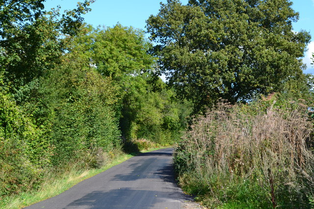 Lane near Sutton Common