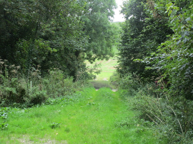 Track to the Winterborne