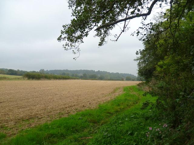 Sussex Border Path near Hartfield Road