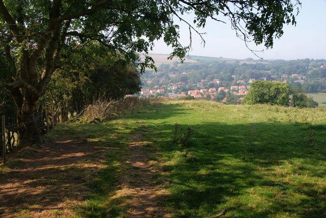Path on Echo Hill