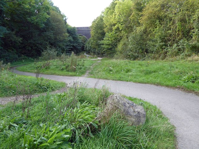 Around the bends on the trail to Conisbrough