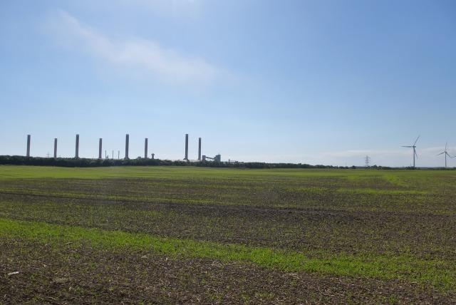 Woodhorn Industry