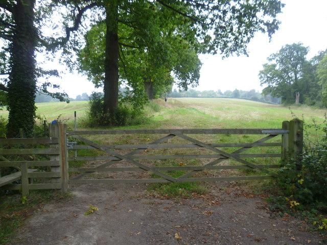 Sussex Border Path near Cowden