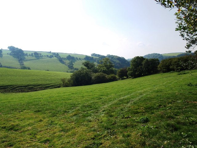 Grassy slopes next to lane between Bickingcott and Lambscombe