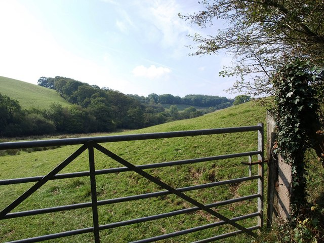 Field gate and wooded valley near Lambscombe