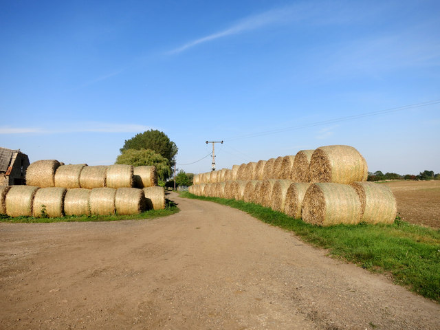 Avenue of Bales