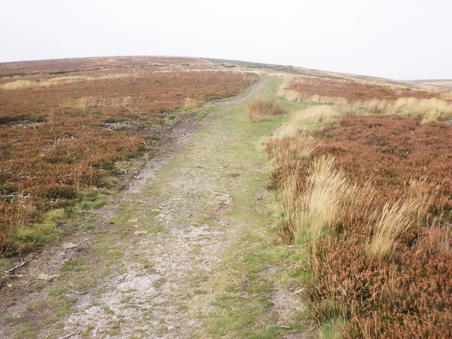 Track on Beacon Hill