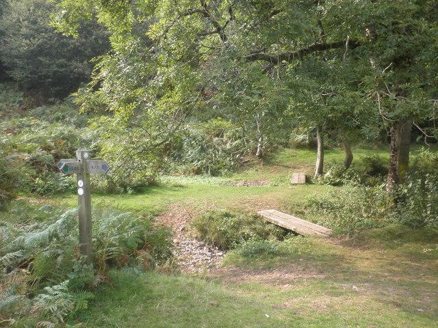Dry stream beds, Smith's Combe
