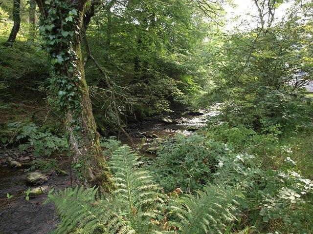 The East Lyn river next to the A39 near Hillsford Bridge