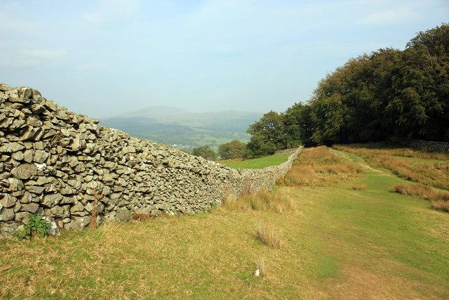 Drystone Wall on the Precipice Walk