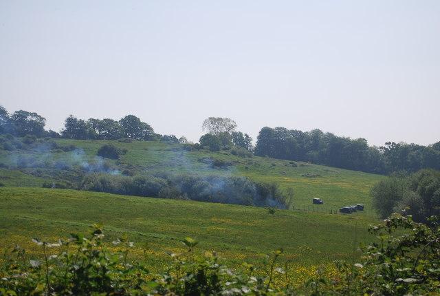 Rural scene south of Pembury