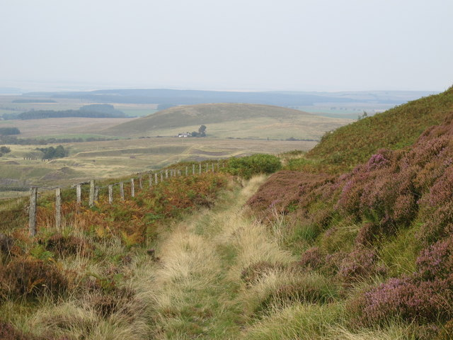 Course of former mineral railway below Brown Fell