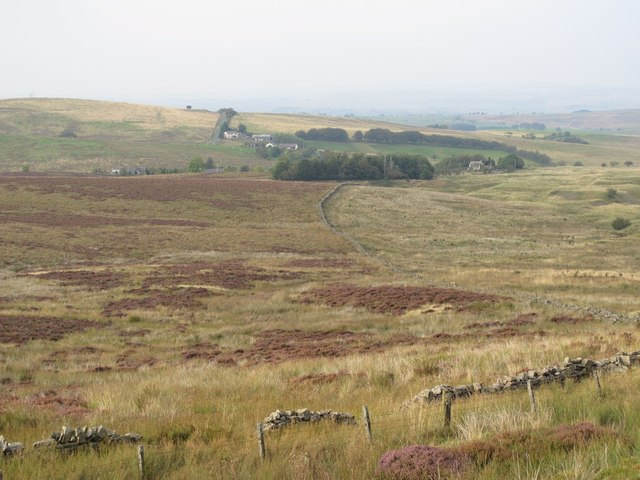 Moorland between Brown Fell and Forest Head