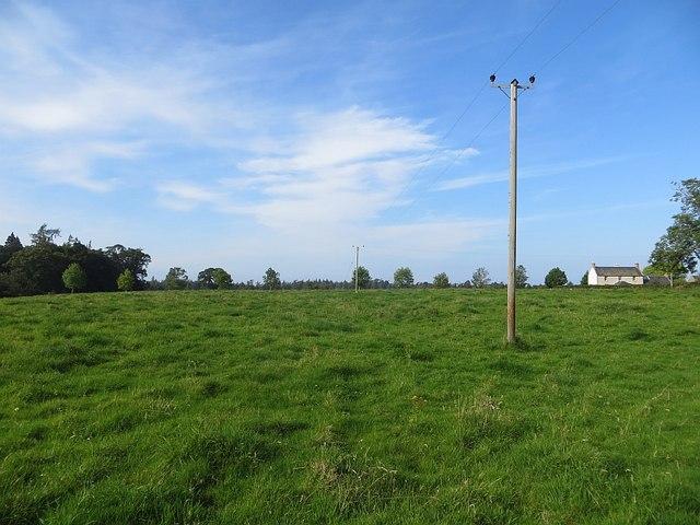 Field, Achneim