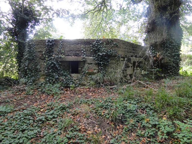 Type FW3/22 pillbox beside the road south east of Walsingham