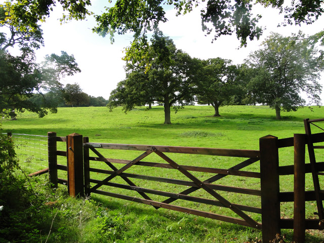 Gate to a lush meadow