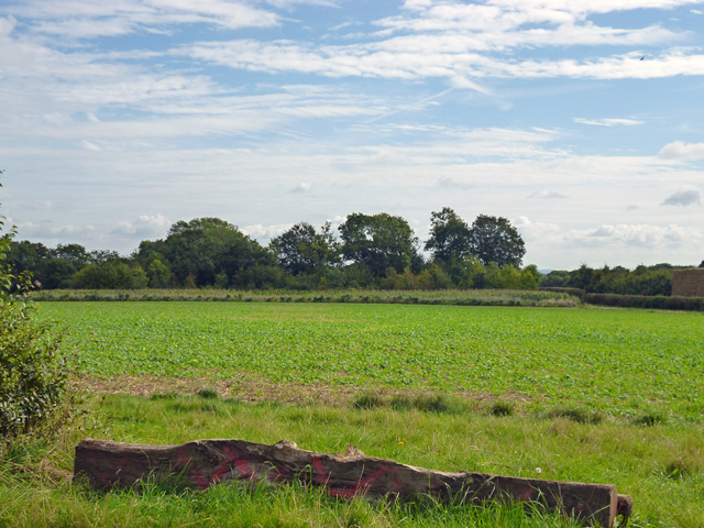 View east from Hole Lane