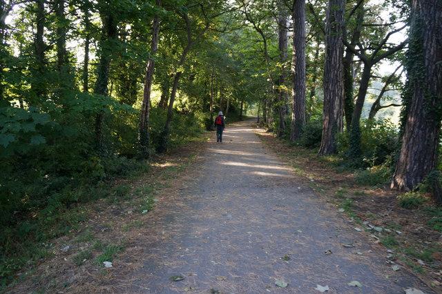 Wales Coast Path leaving Bangor