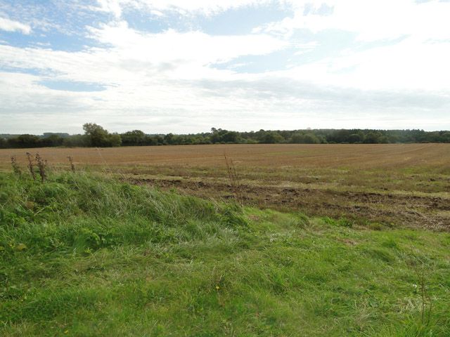 Field near Vinepark Farm