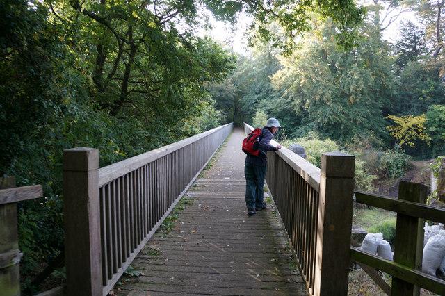 Footbridge over the Afon Cegin