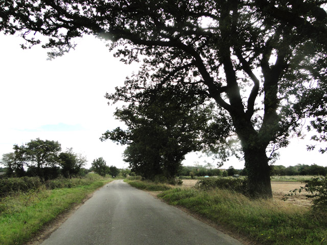 The road by Thursford Green