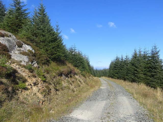 Logging road, Kilmichael Forest