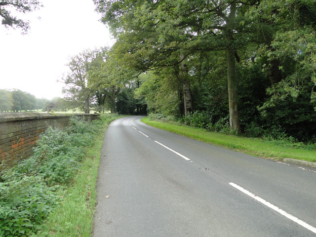 Road past the Deer Park at Swanton Novers