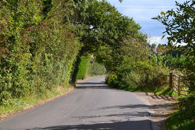 Lane past Brocas Farm