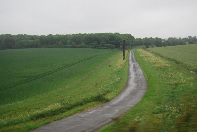 Track to Morden Grange Plantation