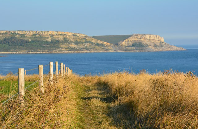 Coast path looking towards St. Aldhelm's Head, Isle of Purbeck, Dorset