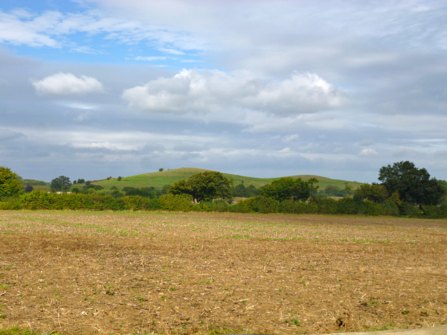 View towards Horsedown Common