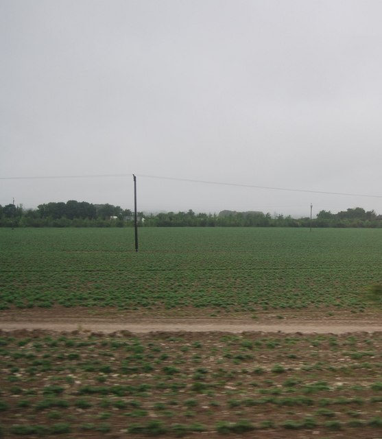 Farmland on the edge of Royston