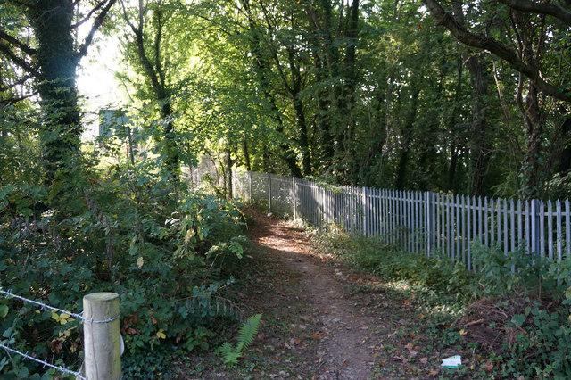 Footpath leading to Bryn