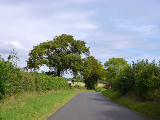 Road towards Crondall
