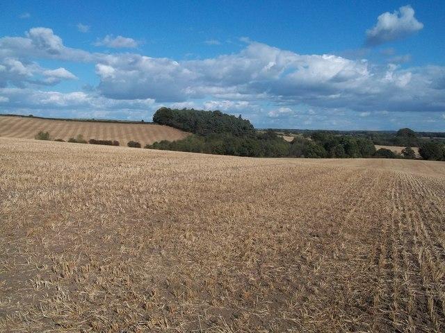 Field of Stubble near Weston Underwood
