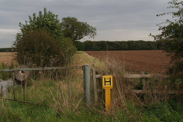 Former track to Rothwell Grange Farm and a water main marker