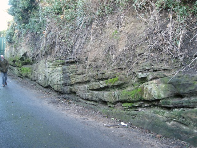 Sandstone exposure, entrance to former quarry off Wharf Street, Warwick