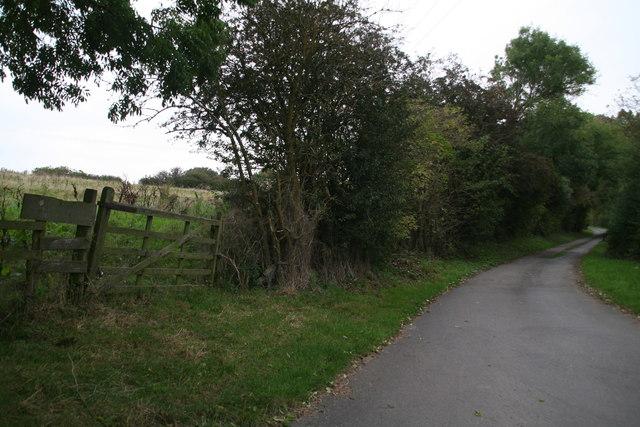 Road to Nettleton Bleak House