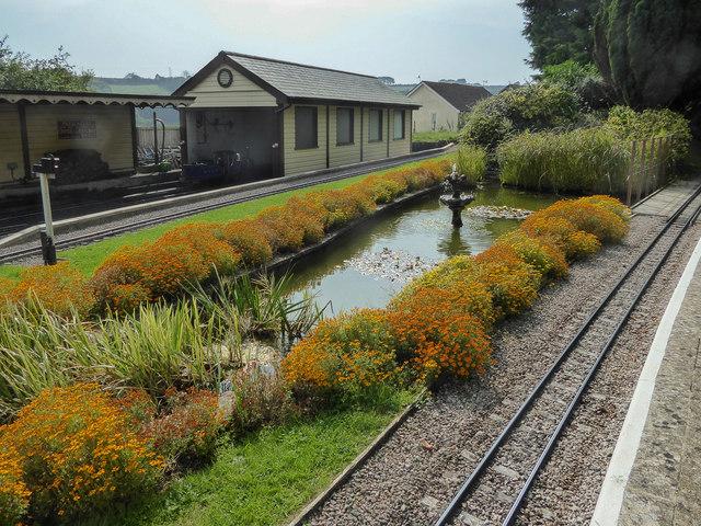 Water Garden, Pecorama, Beer, Devon