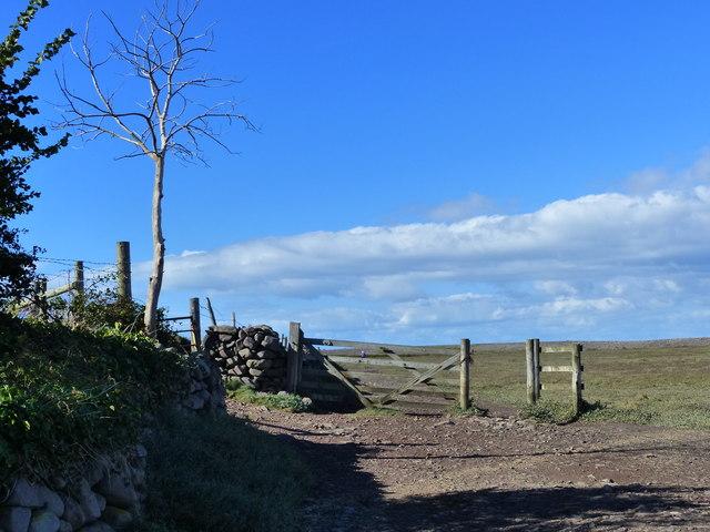 Track to Gore Head, Porlock Weir, Somerset
