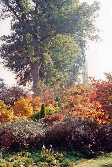 Savill Gardens, Windsor Great Park in early autumn