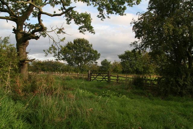 Grazing land behind Wood Farm, Grasby Road