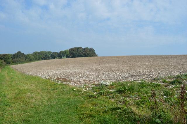Footpath across farmland on Giant Hill