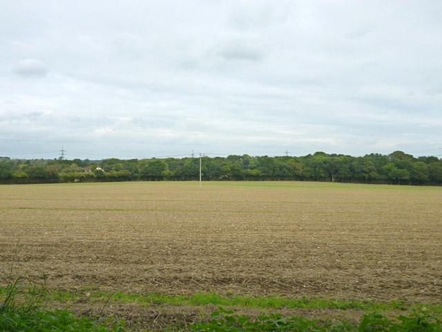 Field near Westfield Cottage