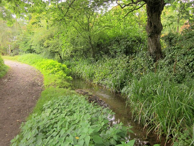 Stream and path, East Quantoxhead