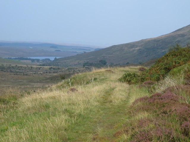 Course of former mineral railway below Brown Fell (2)