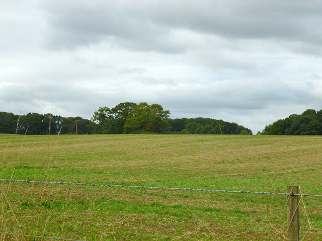 Field near Park Corner Farm